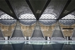 建筑视频 | 另一种诗意:天津大学新校区综合体育馆