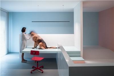以色彩建构空间:犬之宅 / 左通右达建筑工作室