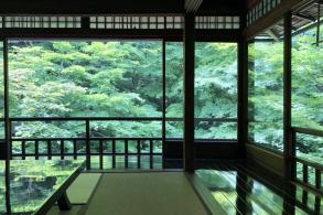 京都的自由意志和决定论:荣光在于长眠