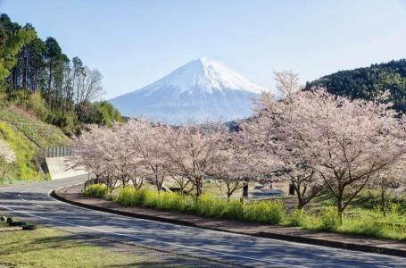 正在招募   日本现当代建筑寻踪·第20期·樱花季(2019年3月29日—4月6日)