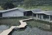 禾肚里稻田酒店,惠州罗浮山下的田间度假区