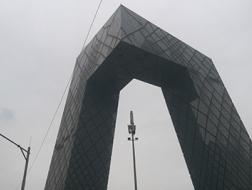 北京荒漠,重庆森林