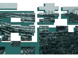 """开发未动,民意先行:深圳人怎么看即将招标的""""安托山艺术公园与博物馆群""""?"""