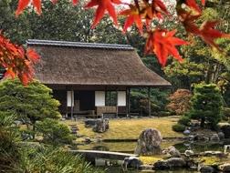 旅行现场 | 日本之美,庭园之心