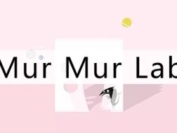 时光有深意,欲速反而迟:Mur Mur Lab的2017年