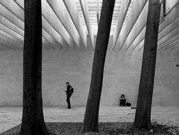 你不知道的10个威尼斯建筑双年展冷知识