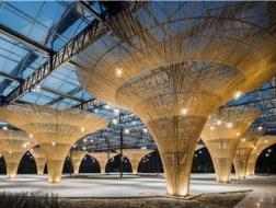 竹伞下的盛宴:春沁园休闲农庄生态大棚改造实践 / 米思建筑