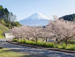招募结束 | 日本现当代建筑寻踪·第20期·樱花季(2019年3月29日—4月6日)