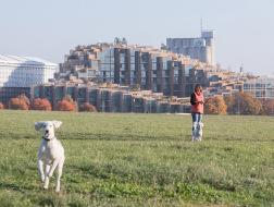 斯德哥尔摩的人造山坡:BIG住宅新作完工