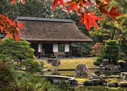 正在招募 | 心像的风景:日本庭园·第7期·红叶季(2019年11月17日—11月24日)