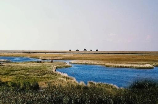 7个景观连接半座岛屿,ADEPT等4家事务所公布丹麦阿迈厄自然公园方案