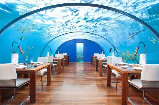 建筑一周 | 世界上第一家水下酒店开业,深圳龙岗将建700米高塔,包豪斯巴士开始巡游世界