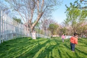 不去武大?春季赏樱的另一个选择:樱花游园 / UAO瑞拓设计