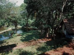 天堂的路:斯里兰卡与巴瓦