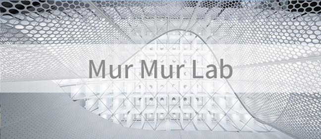 不囿于传统,于不意中见真知:Mur Mur Lab