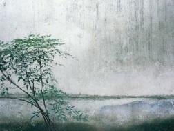 对话埃莱娜·比奈Hélène Binet:穿透光影与时空