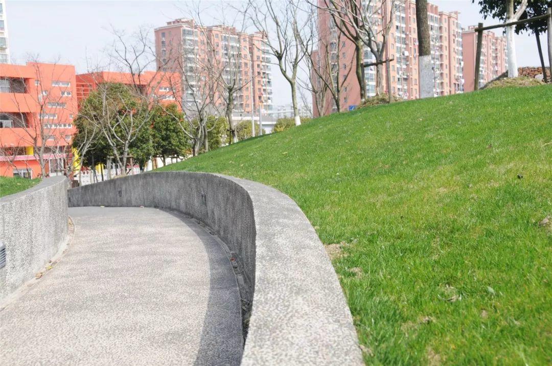 Hélène Binet镜头下的江桥爱特公园,与5年自然变迁