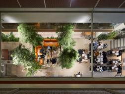 共享生活方式:Treehouse青年共享公寓 / Bo-Da Architecture