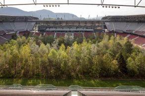 奥地利最大公共艺术作品开放:去球场,看树林