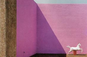 经典再读40 | 巴拉甘自宅:宗教,光,身体与马