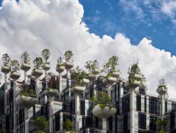 "Heatherwick工作室上海项目""1000棵树""即将竣工"