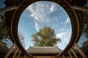 """七舍合院改造:植入现代""""心脏"""",重现传统建筑的样貌 / 建筑营设计工作室"""