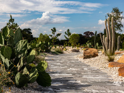 "West 8新作:休斯顿植物园一期建成开放,打造""户外画廊"""
