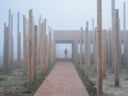 树林里的图书室:朦胧幻境 / 空间里建筑设计事务所